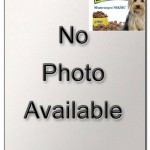 """Šifra: 30754 """"nancy"""", mantil za pse, m, 45 cm"""