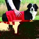 Sifra: 2350 Top-fix, peskir za pse i macke, 50x60 cm,crveni