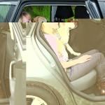 Sifra: 1320 Prekrivac-zastita sedista automobila, najlon, 2.15x1.45m