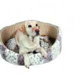 """Šifra: 37512 Krevet za pse """"leika"""", 53 cm"""