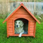 "Šifra: 39533 Kucica za pse ""natura"" xl 116x92x104,5 cm"