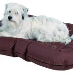 """Šifra: 37451n Jastuk za pse """"drago"""", 80x60cm, braon"""