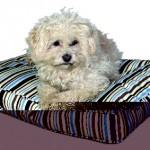 """Šifra: 37202 Jastuci za pse """"balko"""", najlon, 90 x 65 x 10 cm"""