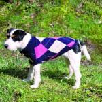 """Šifra: 30804 """"edmonton"""" mantil za pse, plavo-roze-bez, m, 45cm"""