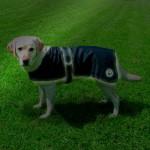 "Šifra: 30519 ""orlans"" mantil za pse , 70 cm Šifra: 30512 ""orlans"" mantil za pse, 30 cm"