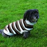 """Šifra: 30541 """"tcoat hamilton"""", pleteni mantil za pse xs, 30 cm"""