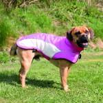 """Šifra: 30234 """"avalon"""" mantil za pse, m, 45cm, roze/krem"""
