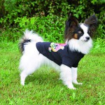 Šifra: 28392 Rockingham majica za psa, xs, 22cm, crna