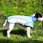 """Šifra: 30241 """"avalon"""" mantil za pse, xs, 30cm, plavo/krem"""