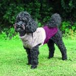 """Šifra: 30530 """"calgary"""",mantil pleteni za pse,xs,25cm"""