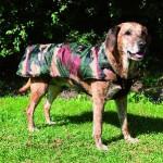 """Šifra: 30773 """"cayenne"""", mantil za pse, s, 40cm, camouflage"""