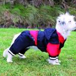 """Šifra: 30192 """"cayrees"""" kisni mantil za pse s, 35cm, crno-crvena"""