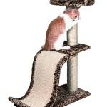 """Šifra: 43378 Penjalica """"arona"""", 87 cm, leopard"""