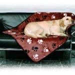 Šifra: 3716 Cebe za pse plis, browny, 1 x 1,5 m