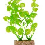 Šifra: 8933 6 plasticnih biljki, oko 12cm