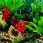 Šifra: 8111 Pozadina za akvarijum,slatka / slana voda 30 cm x 15 m