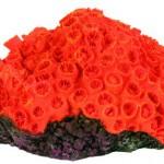 Šifra: 8809 Set od 4 korala