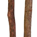 Šifra: 5875 2 precke za sedenje, 35 cm/10 i 12 cm