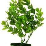 Šifra: 8968 6 akvarijumskih biljki, srednje